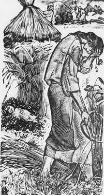 Василина на жнивах. Ілюстрація Я. В.…