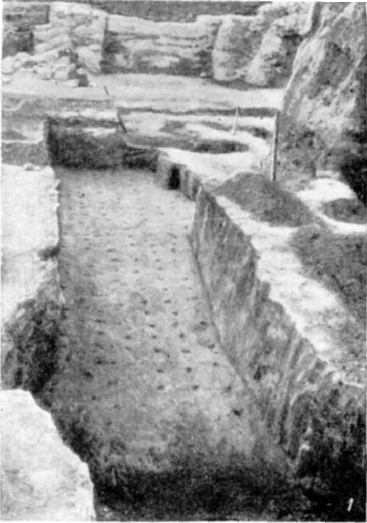 Табл. V-1. Развалины Десятинной церкви. Фундаментные рвы с остатками деревянных субструкций