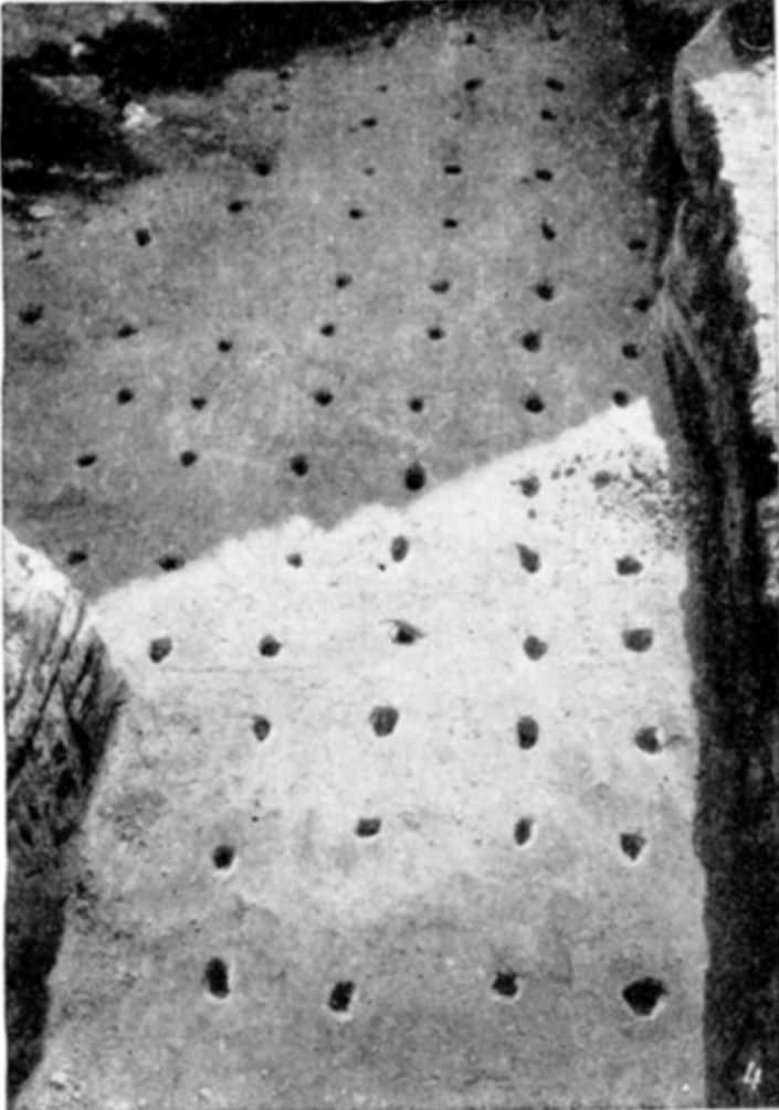 Табл. V-4. Развалины Десятинной церкви. Фундаментные рвы с остатками деревянных субструкций