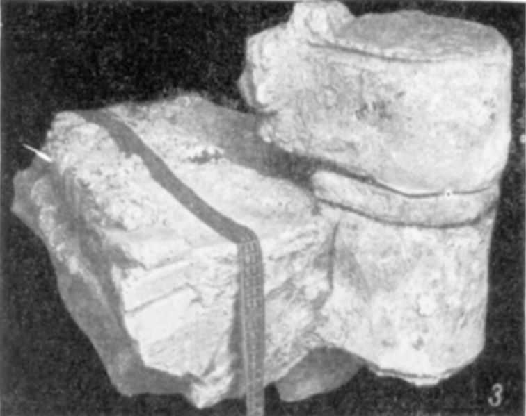 Табл. VII-3. Развалины Десятинной церкви. Фрагмент столба с полуколонкой