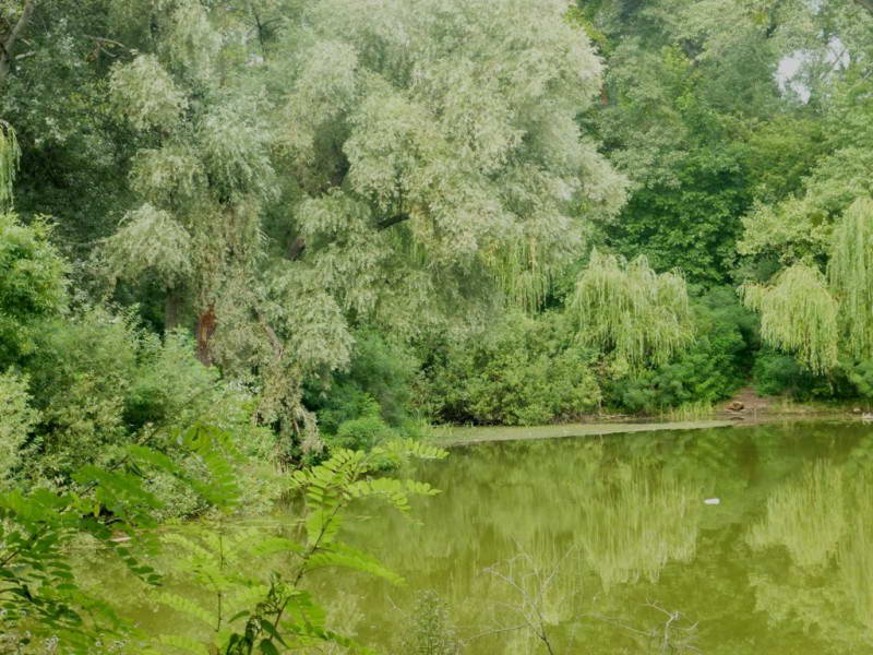 Озеро Березка