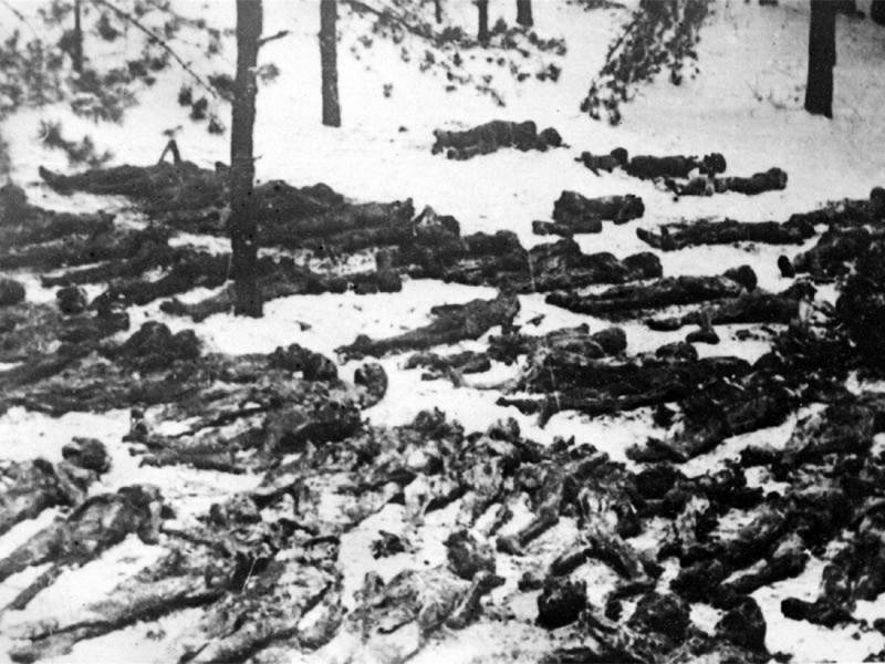 Ексгумація жертв Дарницького концтабору