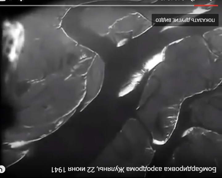 Фото південної частини заплави Дніпра…