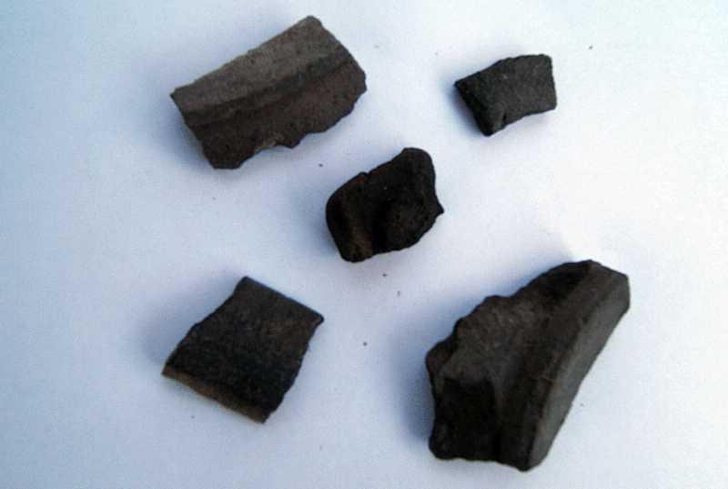 41. Фрагменты черной керамики